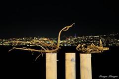 Les Flottins (joménager) Tags: rhônealpes hautesavoie lefabuleuxvillage evianlesbains nikonpassion boisflotté nikond3 nuit nikonafs24120f4 night lesflottins évènementfête sculpture poselongue thononlesbains france fr