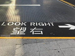 Cross walk signs in Hong Kong (okaystephanie) Tags: hong kong travel culture china history urban spaces cityscapes ferris wheel skyscrapers street art asia modern chinese architecture nature buddha tian tan statues sky lifts trams signs signage