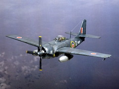 1:72 Grumman 'Wildcat FR.VII' (F4F-8P/FM-3P), aircraft KB230/'D' of the Royal Navy Fleet Air Arm No. 1835 Squadron; aboard HMS Premier (D 23) near Scotland, November 1945 (Whif/Hobby Boss kit conversion) (dizzyfugu) Tags: 172 f4f wildcat bubble canopy late version post wwii second world war darl blue fs35042 royal air force raf faa fleet arm hms premier training trainer decl landing photo reconnaissance camera long range dark sea naval vintage fictional aviation dizzyfugu franclab whif whatif model kit modellbau conversion vacu hobby boss fm 1835 squadron d 23 d23