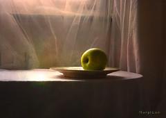 Green Apple ... (MargoLuc) Tags: green apple winter time fruit stilllife minimalism window natural light table backlight white tablecloth dish pottery shadows texture skeletalmess