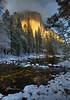 The Warmth of Winter (Fereshte Faustini) Tags: elcapitan snow river yosemitenationalpark mercedriver pine trees cloud fereshtefaustini photography