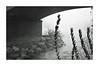 "punto di rugiada ;/)  Киев-5 ""Black Sabbath"" (schyter) Tags: киев5 kiev5 black sabbath arsenal rangefinder soviet camera гелиос94 helios 94 1850 sn702123 lens kodak tmaxp3200 expired scaduta rapri e201 spotmeter lightmeter homemadesoup tank ap compact epson v600 analogica analogic film pellicola allaperto calma 135 35mm homemadescanned homemade development telemetro fsu lodi bw bn bianconero blackwithe bianco nero negative negativo monocromo analogicait"