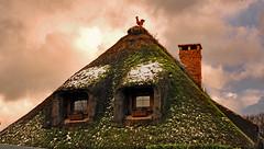 Coq sur chaume (o.penet) Tags: toitdechaume normandy décorations toits roofs cockerel house