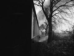 Selfkantbahn (Christian Güttner) Tags: zenzabronica etrs ecodeveloper moerschecodeveloper rollei rolleirpx400 tyskland svartvitt czarnobiale eisenbahn järnvägs
