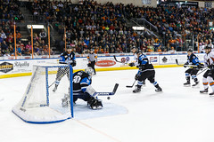 "Missouri Mavericks vs. Wichita Thunder, January 7, 2017, Silverstein Eye Centers Arena, Independence, Missouri.  Photo: John Howe / Howe Creative Photography • <a style=""font-size:0.8em;"" href=""http://www.flickr.com/photos/134016632@N02/32210091136/"" target=""_blank"">View on Flickr</a>"