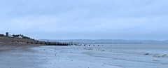 6888 Groynes passed their best (Andy - Busyyyyyyyyy) Tags: 20170111 bbb beach ggg groynes kent romneysands sea water