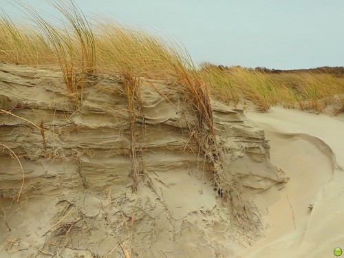 The dune has layers...