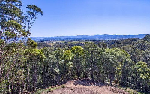 400 Clothiers Creek Road, Nunderi NSW