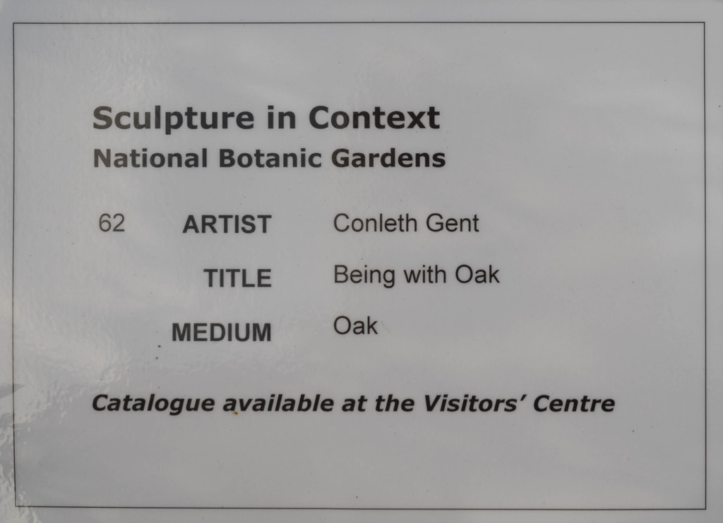 BEING WITH OAK BY CONLETH GENT [SCULPTURE IN CONTEXT 2015] REF--107679