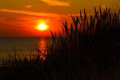 Zonsondergang de Koog (l-vandervegt) Tags: sunset sun holland netherlands zonsondergang nikon nederland paysbas zon niederlande 2015 paísesbajos belanda paesibassi d3200 niderlandy