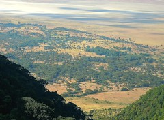 Tanzania (Ngorongoro) View of Ngrongoro conservation area from crater rim