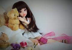 My sweet girl (La fe des Lanternes) Tags: atelier reira momoni nena02