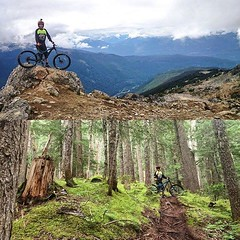 From the Top of the World... (Harry Head) Tags: bike whistler dh mtb pnw topoftheworld gatorade inthezone tld whistlerbikepark headracing maxxistires troyleedesigns giantbicycles obsessionbikes ryderseyewear odigrips ridelife spankbikes winfromwithin uploaded:by=flickstagram atlasbrace gamutusa tldbike douhaveapair finelinesigns limenine tldcanada instagram:photo=10776372226637363741391066810 maxallinson18 peakzone