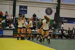 DSC_0238 (BrockportAthletics) Tags: new york college golden university state tournament playoffs volleyball ncaa potsdam eagles framingham clarkson the regionals brockport 2015 sunyac