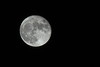 [NX3000] Full Moon (chimatteo) Tags: moon penelope pentax space luna f45 200 80 smc spazio silverylight penelopeumbrico umbrico brucesilverstein samsungnx3000 smc8020045