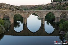 Up & Down (PeRRo_RoJo) Tags: bridge espaa water landscape puente mirror agua aqua sony paisaje espejo reflejo es castillaylen ledesma infraestructura dslra580