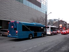2015 ElDorado National EZ-Rider II (5) (Alexander Ly) Tags: urban canada west bus grande expo quebec montreal canadian eldorado national ii transit stm trans autobus association cuta vicinity actu ezrider citso transexpo