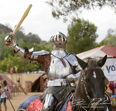 Tournament of the Phoenix (CMWFoto) Tags: life horse man phoenix sport festival clubbing tournament human knights factor