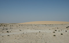 qatar deserto (10) (Parto Domani) Tags: trekking desert arabic east ash desierto oriente middle peninsula medio wste qatar deserto arabica dsert penisola   escursione  shaqra wste dsert