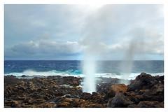 Makapu'u Tidepool blowholes (danny wild) Tags: hawaii pacific hiking blowhole kai honolulu makapuu