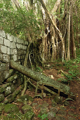 Officers Quarters Inner Cabrits Cannon (Entangled Photons) Tags: pirates caribbean dominica karibik