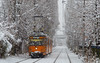 Snowy fighter (mzah1116) Tags: snow tram tramway 23 duewag urban strret трамвай fighter