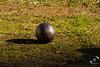 """""""Cruces cálidas"""" (javimcarranza) Tags: petanca campo luces sombras contrastes hierro acero metal fría plateada brillo córdoba sierra verde"""