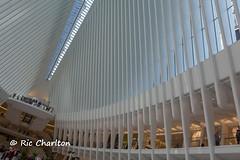 IMG_3796.jpg (Ric Charlton) Tags: 2016 newyorkcity september newyork
