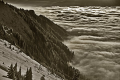Swiss winter time , above the sea of clouds....No. 6389. (Izakigur) Tags: izakigur feel swiss suiza suisia suizo suïssa dieschweiz d700 nikond700 nikkor nikkor2470f28 myswitzerland musictomyeyes lasuisse laventuresuisse liberty thelittleprince ilpiccoloprincipe valais vaud romandie flickr nature feelings winter naure trees fixyou coldplay 2017 lhiver topf25 topf600 100faves 200faves 250faves 500faves 300faves
