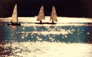 Sailboats in January