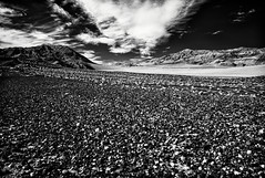 So you know how the universe is vast and everlasting. And you're just a tiny spec of existence. You're exactly that. Make it count. (jev) Tags: avenon bw leicam8 majestic super ubehebecrater artq blackandwhite blue california deathvalleynationalpark deathvalley desert digitalinfrared dvnp dvp ecology ecosystem environment environmentalism explore expoloremore family infra infrared instadaily instagood instatravel jjforum1788 land landscapephotography leica monochrome nationalgeographic naturalbeauty nature natureaddict naturegram naturelovers naturephotography roadtrip scenery spectrum surreal travelgram travelphotography white wide wwwartqcom teakettlejunction unitedstates