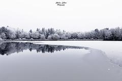 Parc des Gayeulles -Rennes- (Lollivier Stéphane) Tags: rennes gayeulles parc givre hiver winter etang lac france tokina nikon explorer glace paysage