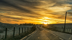 Out of the sun (OR_U) Tags: 2017 oru uk scotland road sunset car outofthesun fence sky street roadmovie motörhead lemmy 169 widescreen driving winter landscape hff