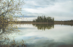 tranquility (rockinmonique) Tags: alberta lake reflections moody blue green gold tranquil peaceful calm moniquew canon canont6s sigma copyright2017moniquew