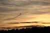 Bild 19/365 (PiaLiz) Tags: solnedgång moln orm sunset cloud snake