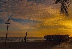 weekend swing... (MailHamdi) Tags: mailhamdiimages morib selangor malaysia sunset goldcoast skyscape silhouette beach seascape oceanview mailhamdi nikon sigma1750mmf28