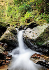 Torc Falls (Dusty Dog Imaging) Tags: ireland eire killarney countykerry waterfall water rocks travel green
