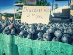 The Blues (wanderess78) Tags: blue blueberries fruit market indiana summer
