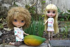 Garden Tales: The Pawpaw Invasion (20 Feb) (yotsub4) Tags: blythe ブライス カスタムブライス ooakblythe customblythe garden springonion herb pennyprecious translucentblythe papaya pawpaw caricapapaya odddoll fruits