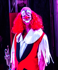 Slapstick (Tony Shertila) Tags: 20170224194010 england gbr thetford unitedkingdom circus europe britain fantasia acrobats clown performance geo:lat=5240236651 geo:lon=074174881 geotagged pig indoor perfomance show acrobate norfolk acrobat entertainer stage bigtop ring circuseuropebritainenglandfantasiaacrobatsclownperformance circuseuropebritainenglandfantasiaacrobatsclownperformanc