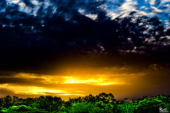 """""""The First Day"""" IMG_6094 (DanGibsonPhotography) Tags: sky clouds sunset trees beautiful centralflorida central florida ethereal landscape nature cloudsstormssunsetssunrises"""