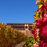Weingut Santa Cruz im Colchagua-Tal in Chile