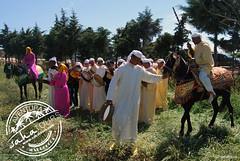 bereberes del atlas (sahatours) Tags: voyage africa travel viaje people music nikon culture traditions morocco maroc musica viagem atlas marocco marruecos cultura travelphotography travelphoto