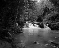 Palm Fall (Lig Ynnek) Tags: 120 film waterfall philippines