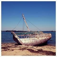 Une épave sur l'île d'Arz (mibric) Tags: sea france boat brittany bretagne wreck épave