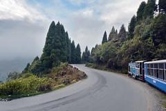 India - West Bengal - Darjeeling Himalayan Railway - 7 (asienman) Tags: india westbengal darjeelinghimalayanrailway asienmanphotography