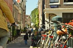 Bloemgracht (thehareandparsnip) Tags: amsterdam canal bloemgracht