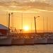 PEI-00541 - Northport Harbour