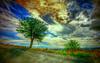 Colours Symphony (* landscape photographer *) Tags: road sunset italy tree art nature colors alberi clouds europe flickr strada tramonto nuvole valle natura valley sa sasi colori paesaggio vita colline salvo spettacolo artistico lucania 2015 respiro landscapephotographer montalbanojonico salvyitaly
