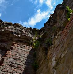 Triumph Of Verticality (II) (avellium) Tags: history wall ancient ruins decay bricks triumph palatul verticality targoviste domnesc